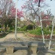 土居公園。