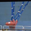 大型クルーズ船 168,666トン  大阪南港に寄港。メチャ大きい‼️マンションが浮かんでるんだなぁ〜