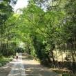鎌倉 旅ラン