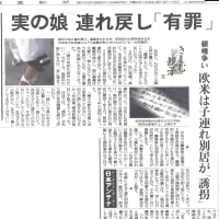 実の娘 連れ戻し「有罪」(きしむ親子②/読売新聞(10/23)