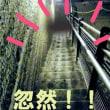昭和ガールズが行く! 神秘の地下神殿「大谷資料館」