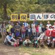 田んぼの学校(稲刈り)2018