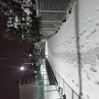 【雑記】雪道