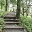 NHK囲碁講座「石の高低差指南」