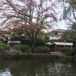 石神井公園〜檀 一雄の家を求めて〜