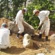 石組みメインの和風庭園