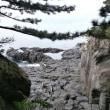 門脇吊り橋に下の景色(伊豆)