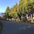 走り納めライド第一弾 -アリランチャーシュー リベンジ- 200km(前編)