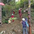 上野原市立島田小学校学校林で様々な活動を展開中