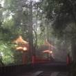 昨日鈴なりの奏智先生に心霊写真の鑑定を行ってもらいました。中に非常にレアな南洋の神様と言おうか魔物と言おうか日本人にとっては見たことのないけったいなものが写っていました。