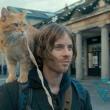 「ボブという名の猫 幸せのハイタッチ」、ストリートミュージシャンが猫に救われるお話!