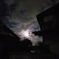 満月ですなぁ。。