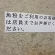 「びんびん亭 本店」  八王子