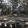 2017秋 福岡②