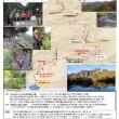 2017年10月 OSAC 計画山行、裏剣報告-2