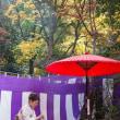 有馬オータムイベント「瑞宝寺公園もみじ茶会」