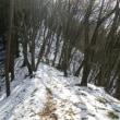 薄ら雪の雁田山