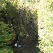 バスツアーで苗場ドラゴンドラと田代ロープウェーで紅葉見物(1)大源太湖