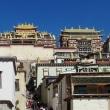 中国・雲南旅行