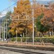 11月11日撮影 その7 南松本にて HD300-9号機の活躍②