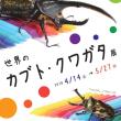 GWは昆虫公園に行こう!!。~5/5はお子様入場料無料~