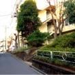 【教室】松戸 沖縄三線教室・初心者クラス お稽古!^_^