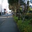 日新町一丁目 日新通り(3)