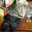 黒猫のアイピロー2種