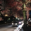 「夜の石川門」