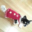 燦ちゃんのセーターその2