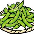 枝豆を育ててみよう