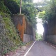 京都半周トレイル2017で記録更新(がんちゃん)