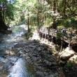 田立の滝 3