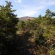 10月、久々の晴れ間に安達太良山へ!26-10-2017