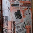 週刊少年ジャンプ51号