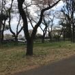 ブレーキの踏み過ぎ         フジドライビングスクール東京