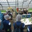 栗原農業未来塾「在学中コース」で視察研修に行ってきました