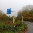 ブルベ「アタック鶴岡1000km」のレポート3日目(米沢~那須~館林~日高ゴール)