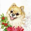 途中経過4 (クリスマス・犬)