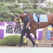 ビューティジョイ   アマリネデビュー2歳新馬