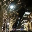 神戸尽くし≪昼:エルミタージュ展≫&≪夜:ルミナリエ見学≫