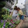 ●8/15 環境の緑化と美化報告 雨なにのにお疲れ様