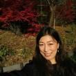 長野県の紅葉
