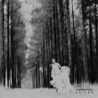 タンディ・ントゥリ『Exiled』