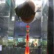 東京タワーIN