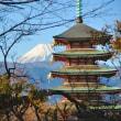 富士山みるなら、、、沼津?