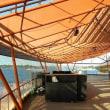 囲碁とシドニー港(4日目午後)