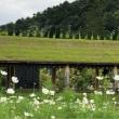 関空へ (琵琶湖のおまけ付き)