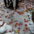 初雪降る北海道をあとに・・・