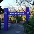 散歩(西新宿&増上寺・徳川将軍家御霊屋)